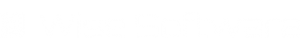 Wise Software Inc. Logo